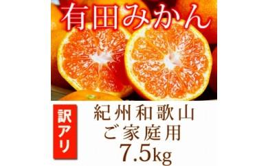 ■【ご家庭用訳アリ】紀州有田産温州みかん 7.5kg