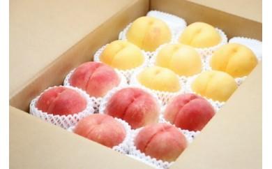 AP38 数量限定!どちらも食べたい「白桃と黄桃の食べ比べセット 5kg」