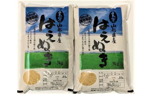 A01-031 はえぬき玄米(10kg)