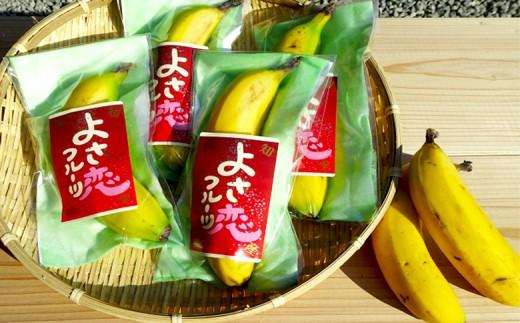 高知初!! 純国産 有機栽培 皮ごと食べられるバナナ