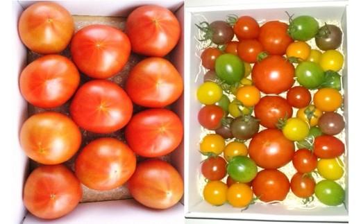J0148旨味のある「ぜいたくトマト」と「カラフルミニトマト」の2kgセット