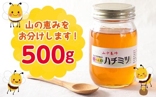 ◇【自然のまま】富津産ハチミツ500g(5〜6月の花)