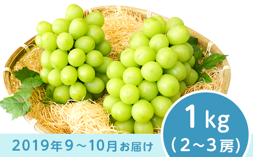 J0252シャインマスカット1kg【2019年度分先行予約】
