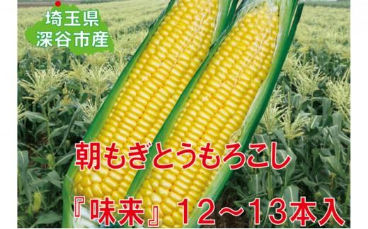 [№5674-0396]フルーツみたいなスイートコーン【味来】