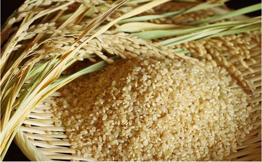 [№5605-0124]あきたこまち玄米5kg×2袋/計10kg