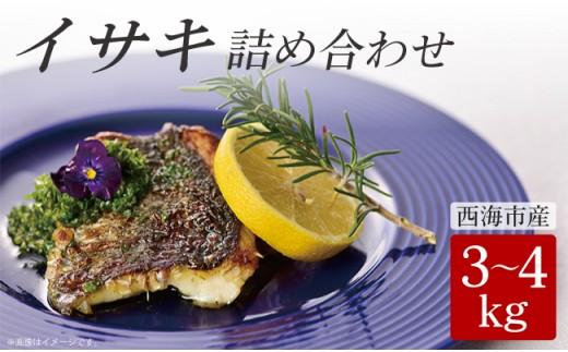 CAA013 【新鮮直送!】西海市産イサキ詰め合わせ 3~4kg分 (カタログコード:B-15)-1