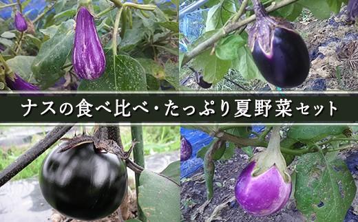 【010-059】ナスの食べ比べ・たっぷり夏野菜セット