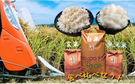 AI2 熊本玉名産 特別栽培米 食べ比べセット(総量12キロ)
