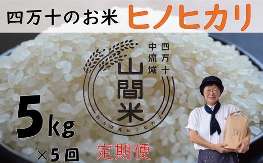 19-508C.9月限定【先行受付】【新米】【定期便】山間米(ヒノヒカリ)5kg×5回お届け