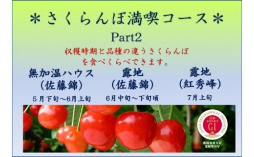 B-0101 2019年産 GI制度登録「東根さくらんぼ」 さくらんぼ満喫コース Part2【定期便】
