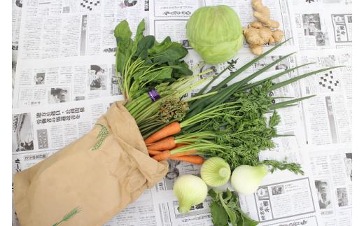 越知町産季節の野菜セット(年4回発送)