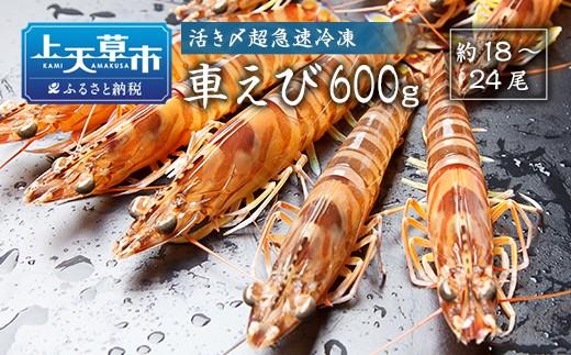 【上天草ブランド認証品】活き〆超急速冷凍車えび600g(約18~24尾)