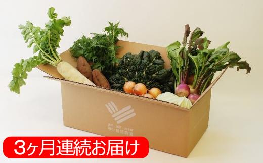 [№5865-0032]【3ヶ月定期便】ゆいさん家の野菜セット