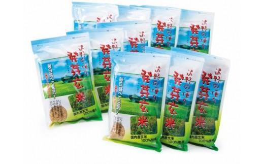 遠野の便り(発芽玄米)500g×10袋セット