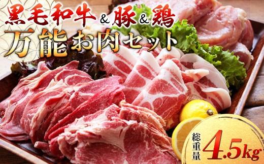 AB59 〈黒毛和牛&豚&鶏〉万能お肉セット(総重量4.5kg)