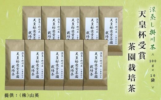 80 天皇杯受賞茶園栽培茶 100g×10袋(深蒸し掛川茶 ※1・新茶受付)