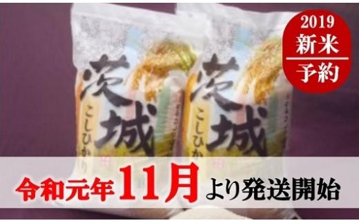 1034 <先行予約>【令和元年産】厳選茨城コシヒカリ20kg