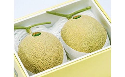 SA0171 酒田の果物専門店厳選 庄内温室 アールスメロン