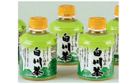 ※お茶屋さんこだわりの緑茶『白川茶ペットボトル』280ml×24本入