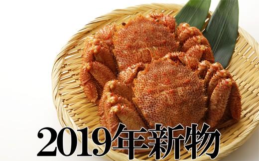 30-34 新物!2019年水揚げ 堅蟹毛ガニ 大 2尾(600g内外)