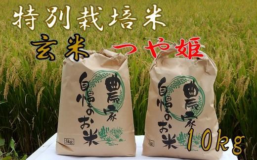 ファミリー農園吉永の[玄米]特別栽培米つや姫10kg