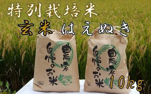 ファミリー農園吉永の【元年産・玄米】特別栽培米はえぬき10kg