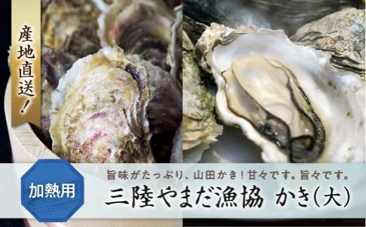 三陸やまだ漁協 かき(大)