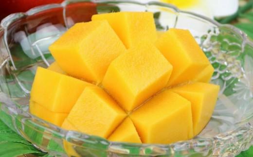 【2019年発送】農家直送!太陽ファームのマンゴー2kg(ご家庭用)