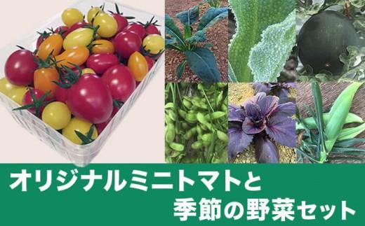K-5【新規就農者応援コース】オリジナルミニトマトと季節の野菜セット