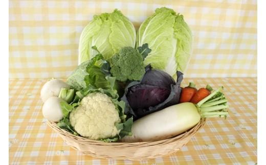 写真は発送商品(秋野菜セット)の一例です