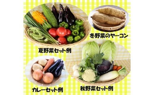 季節ごとの野菜をお届けします
