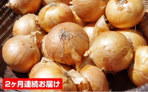 [№5850-0435]香川県産 たまねぎ(約6kg)【2ヶ月連続お届け】※クレジット決済のみ