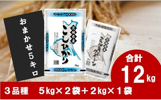 D1141【数量限定】境町産コシヒカリと道の駅さかい厳選米12kgセット (5kg×2袋+2kg×1袋)