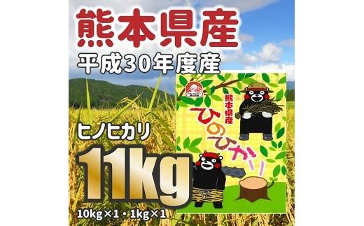 平成30年度産★熊本県産ヒノヒカリ 大容量11kg