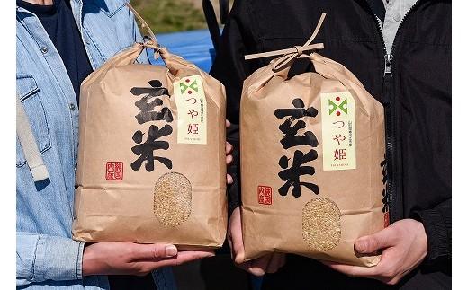 ◆減農薬栽培米だから安心安全◆ 山形県産つや姫玄米8kg(4kg×2袋) 2020年産新米 010-C08