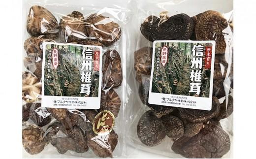 [№5677-0080]原木 信州椎茸 どんこ・香信 干ししいたけ セット