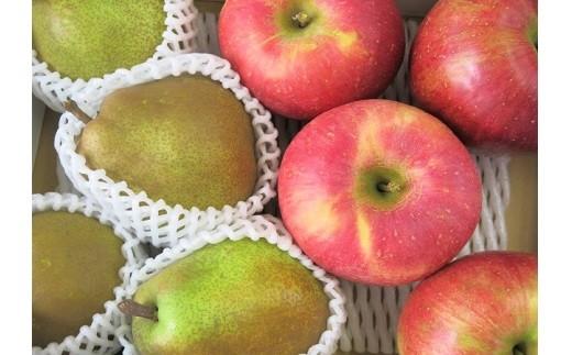 0075-211 ラ・フランスとサンふじりんご詰合せ 5.5kg ご家庭用