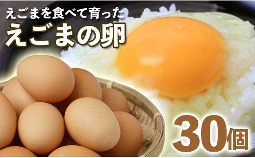【栄養豊富】えごまの卵 30個<1-15>