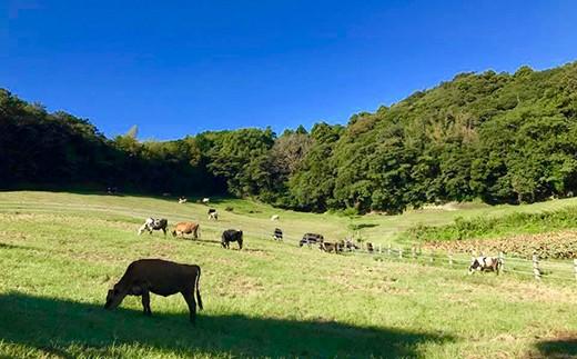 千葉県は酪農発祥の地。