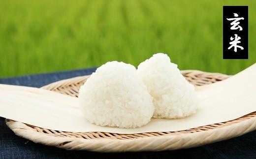【30年産・玄米】特別栽培米ひとめぼれ5kg×2袋《井上農場》