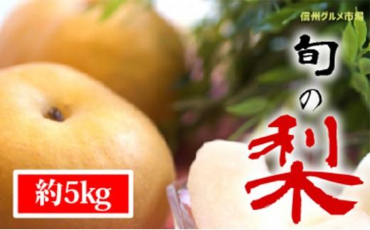 [№5657-2345]【信州須坂の梨】旬の梨 約5kg