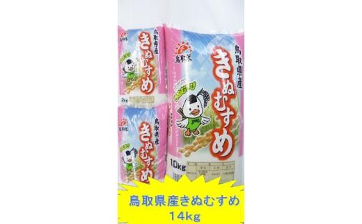 B19-41 鳥取県産きぬむすめ14kg