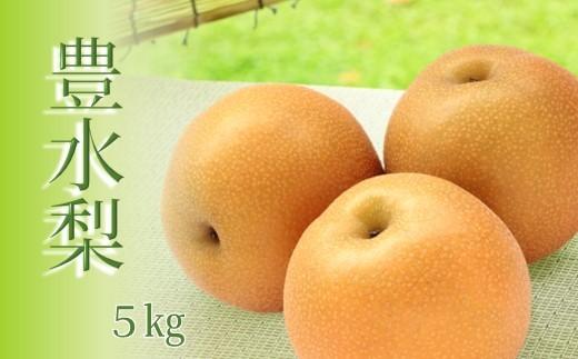 AZ19 玉名産 豊水梨 5kg