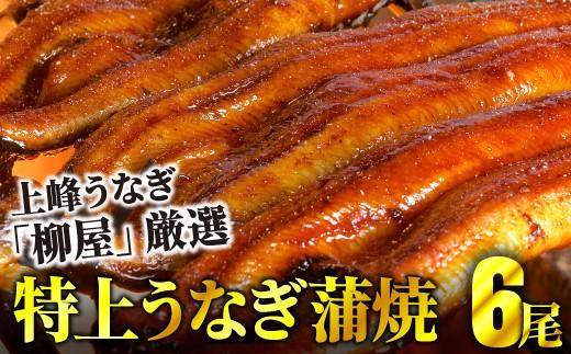 E-148 上峰鰻 柳屋 鰻蒲焼 6尾