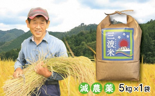 B-89  令和元年産 新米先行予約!!【減農薬】三波農地を守る会のコシヒカリ(新米5㎏)