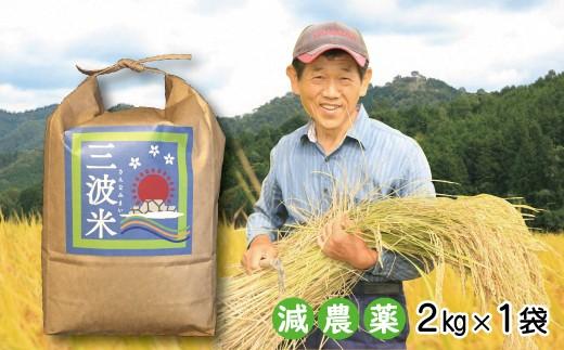A-53 令和元年産 新米先行予約!!【減農薬】三波農地を守る会のコシヒカリ(新米2㎏)