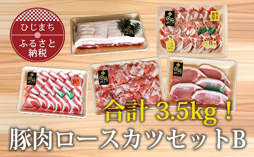 【日出ポーク】豚肉ロースカツセットB【合計3.5kg】