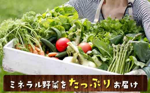 とれたてミネラル野菜セット