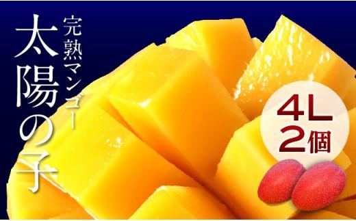 H6701完熟マンゴー「太陽の子」4L×2ケ