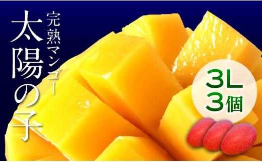 H6703完熟マンゴー「太陽の子」3L×3ケ